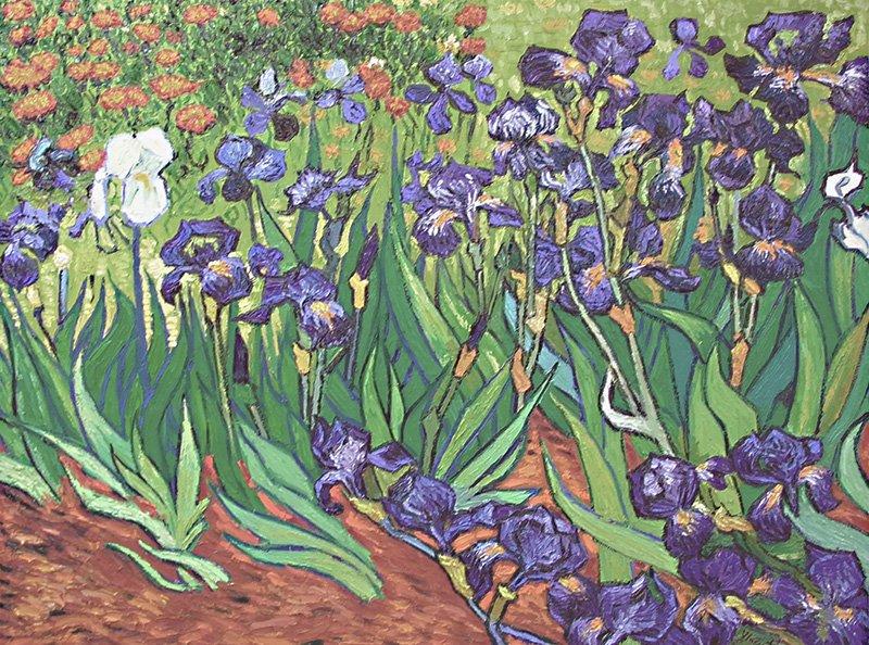 Irises Vincent van Gogh replica