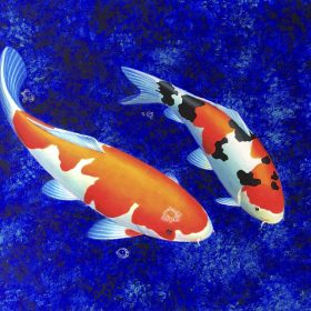 Koi Paintings
