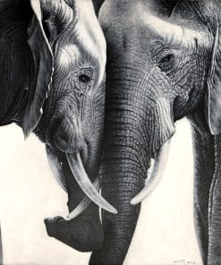 Elephant Canvas Oil Painting